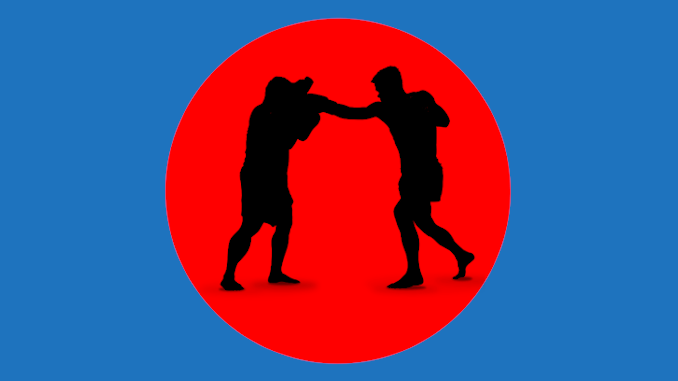 Jeet Kune Do Kampfstile